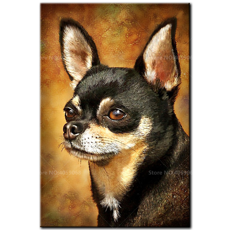DIY Diamond embroidery 5D Full Square Diamond Painting Chihuahua Cross Stitch Pictures Of Rhinestones Mosaic Decor D1021DIY Diamond embroidery 5D Full Square Diamond Painting Chihuahua Cross Stitch Pictures Of Rhinestones Mosaic Decor D1021