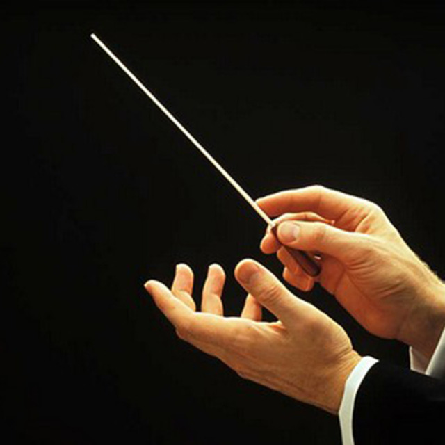 Music Concert Rhythm Band Director Conductor Baton 38.5cm Musical Instrument free shipping