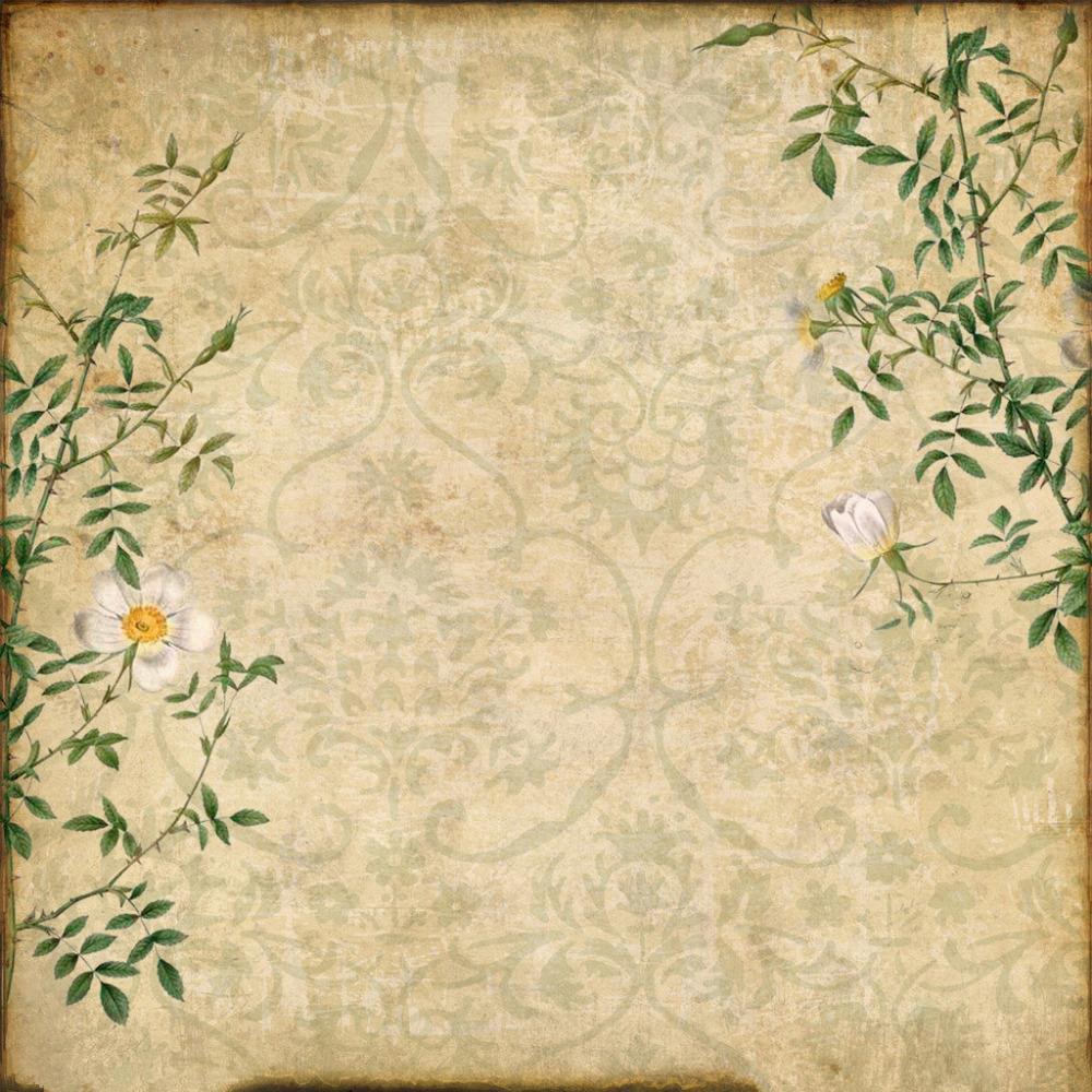 Подсолнухов картинки, текстурная бумага для открыток
