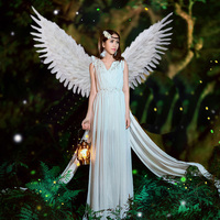 DIY feaher series Fashion accessories white fairy angel wings stage performance cosplay supplies nice gifts EMS free shipping