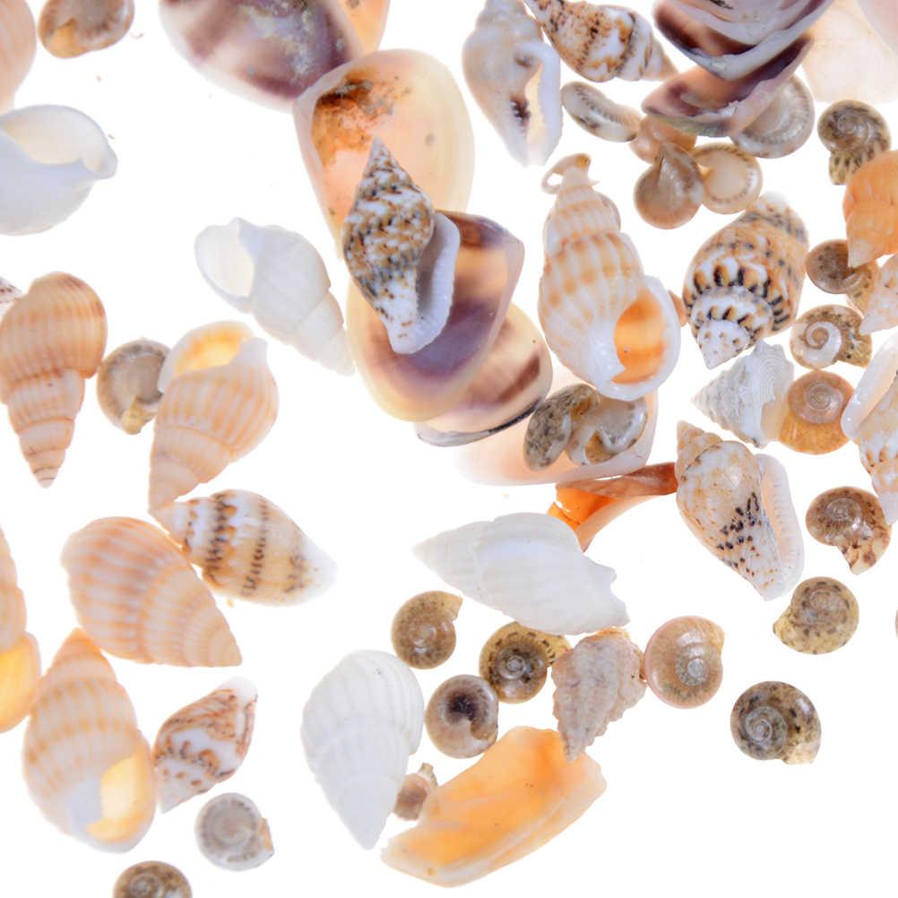 40 ピース/バッグ 1:12 ミニミニチュアドールハウス海シェル盆栽 Lanscape DIY 装飾人形ガーデンアクセサリー