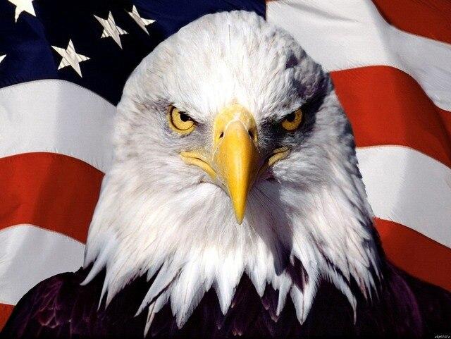 c6c085fa23c3 USA American Flag Eagle Cool Art Huge Canvas Print Poster TXHOME D2964