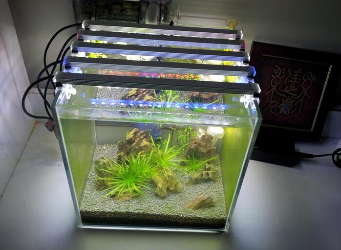 DC 12V 4W DIY Marine Aquarium LED Lighting Decorative Fish Tank Lights Reef Aquarium Lamp
