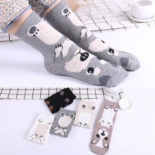 1Pair Fashion High Quality 5Colors Cotton Korean Cartoon Dog Print Women Cute Casual Meias Socks