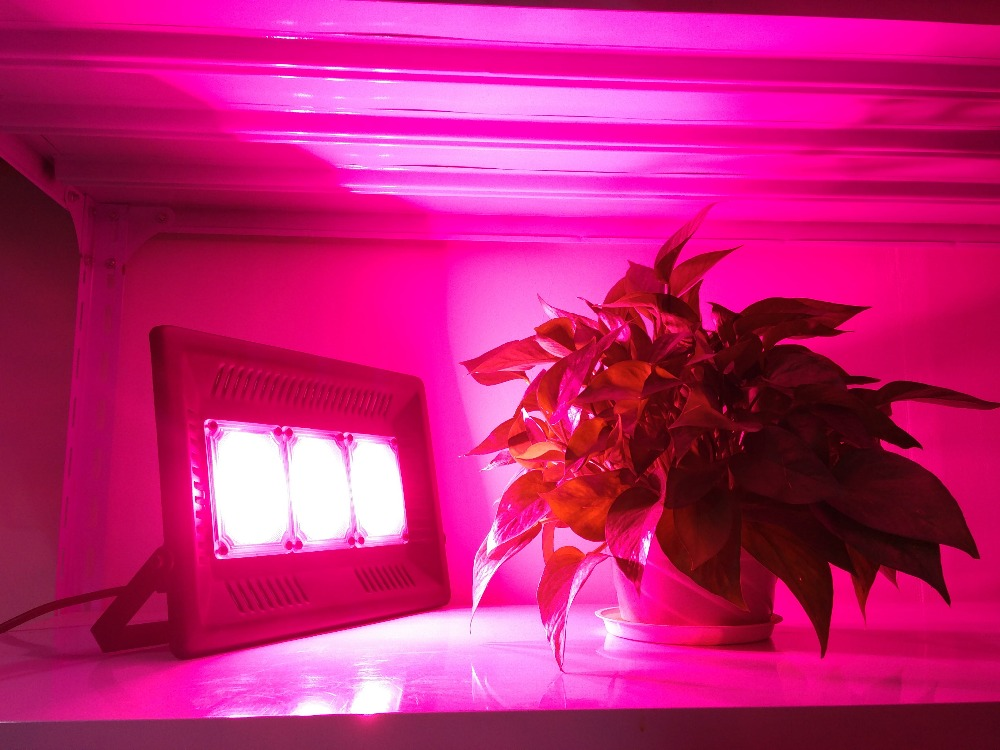 150W Relassy Waterproof COB LED Grow Light led Flood Light Plant Light Full Spectrum with Natural Heat Dissipation and Without N цена