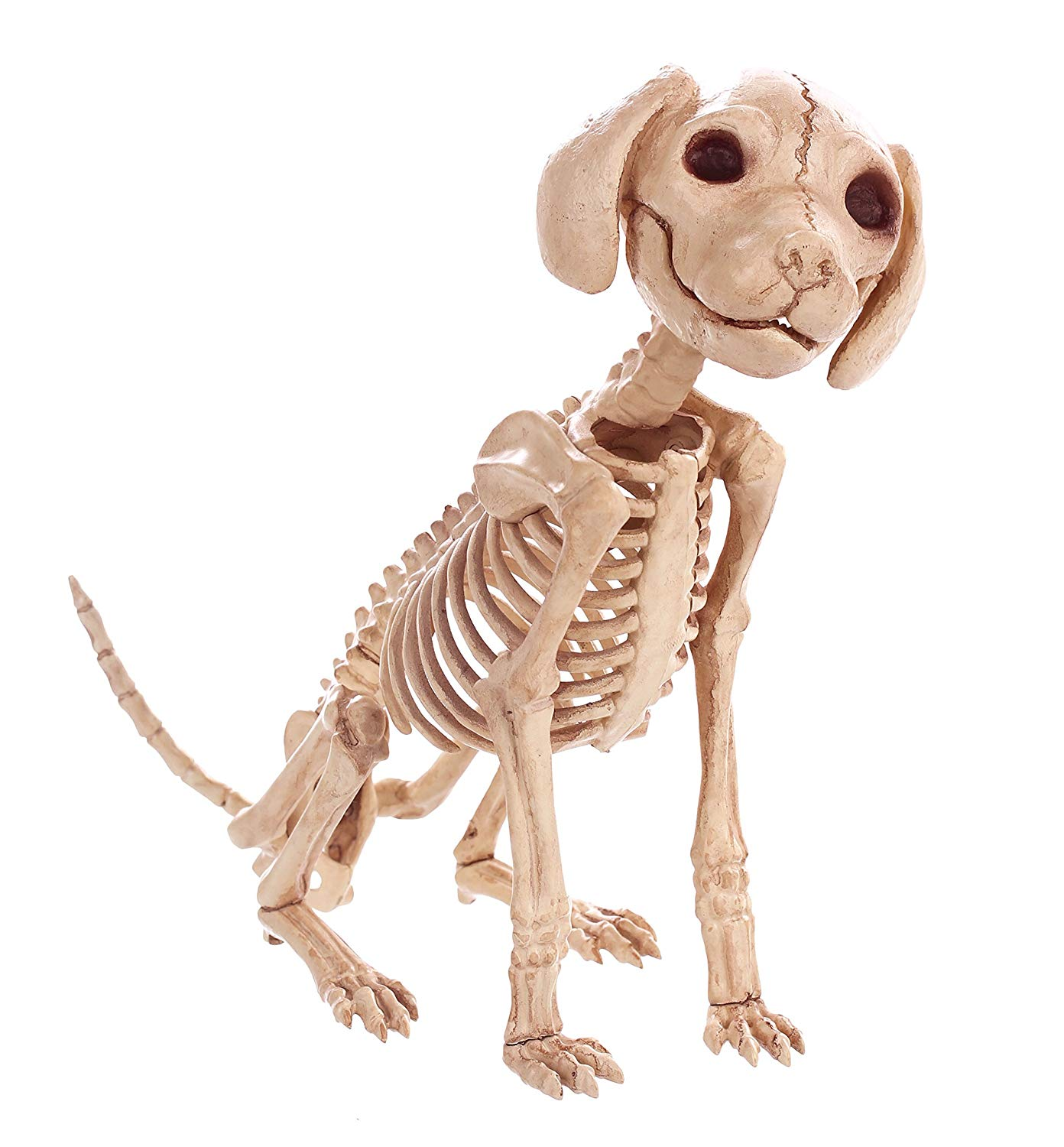 moquerry skeleton dog puppy cat kitty animal bones for horror halloween party bar home decor decoration accessories decoration in party diy decorations from