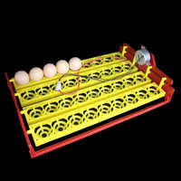 36 Eggs Incubator Automatic Incubator Automatically Turn Egg Tray Incubation Experiment Teaching Equipment 4 * 9 Holes