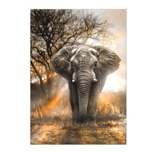DIY 5D Forest Elephant Diamond Painting Embroidery Cross Stitch Home Decor Craft