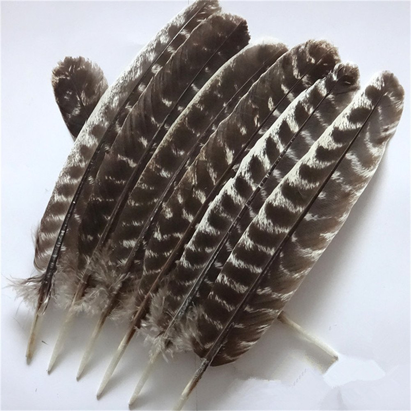 Aliexpress.com : Buy Wholesale Natural Eagle feathers 10 ...