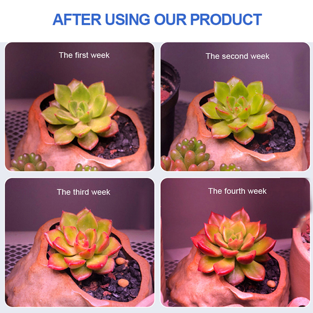 Full Spectrum 100W LED Grow Light Indoor Strip Growth Lamp For Plants Growing Tent Fitolampy Phyto Seed Flower Growth Light Bulb 4