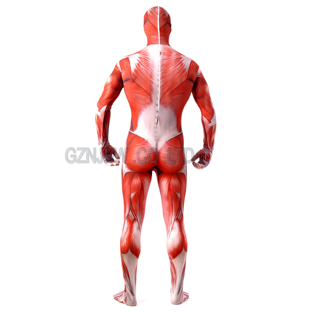 Attack on Titan Cosplay Costume Costume Adult Mens Lycra Spandex Halloween Muscle Zentai Suit Bodysuit Unitard leotard in Zentai from Novelty Special Use