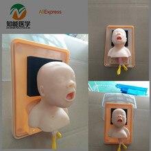 BIX-J2A High Quality Neonate Head For Trachea Lntubation Model human torso model