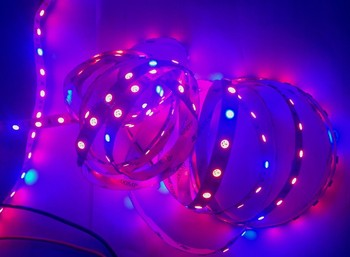 5mX High quality plant grow led strip Red : Blue =5:1LED 60LED/m strip light  DC12V 5050 waterproof IP30/ IP65 free shipping