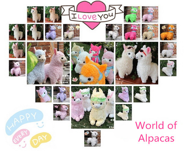 Alpacasso design