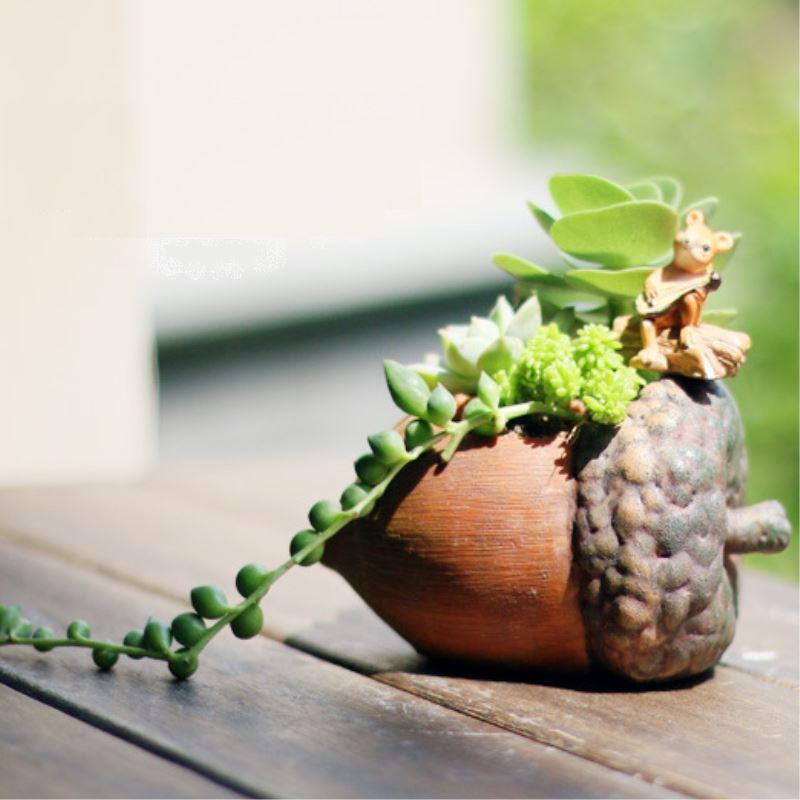 Mini Pine Nuts Succulent Planters Pot Micro Landscape Decorative Flower Pot For Home Garden Decor P10