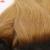 Ombre Brasileña 1B 27 de la Virgen Del Pelo 1 Bundle Ofertas de Dos tono Miel Recta Rubia Armadura Del Pelo Humano Brasileño Ombre Recta pelo