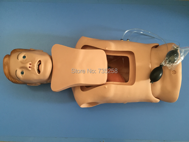 Senior Nasogastric Tube With the Trachea Nursing Model,Airway Nursing Practice Model,Nasogastric Tube Nursing Training Model paula mcgee advanced practice in nursing and the allied health professions