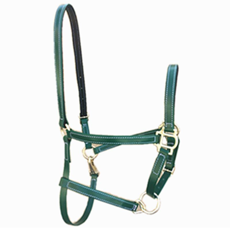PVC Horse  Halter Riding Horse Racing Equipment  PP Webbing Wrapped Polyvinyl Chloride  Halter