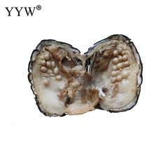 Вакуумная упаковка устрицы желаний пресноводная жемчужная Мидия раковина с жемчугом новое поступление таинственный подарок Сюрприз Вакуумный пакет жемчуг