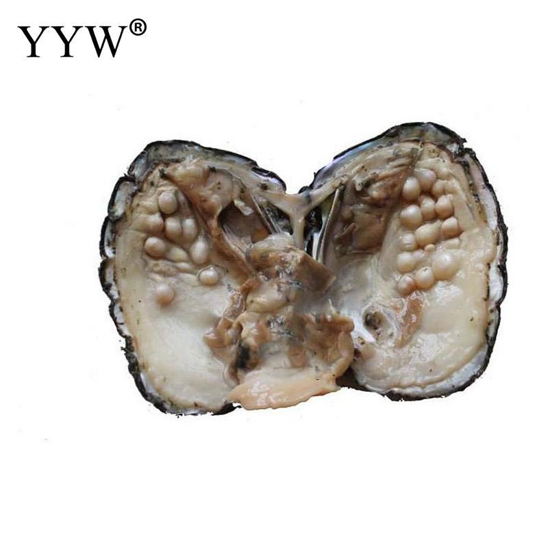 Verschiedene Farbe Perle Mysterious Überraschung Geschenk Perle Mussel Shell Mit Perle Im Inneren Süßwasser Vakuum-pack Oyster Wünschen Perlen