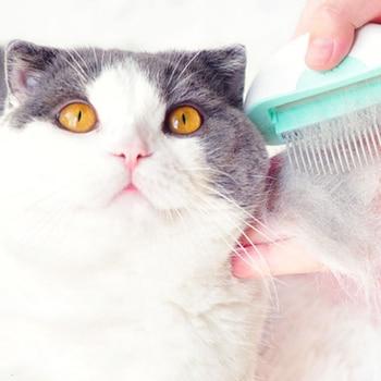 Mini 2 in 1 Deshedding Massage Comb 1