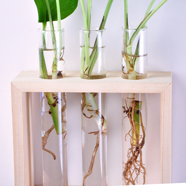 Online Shop Mkono Wall Hanging Clear Glass Flower Vase Desktop