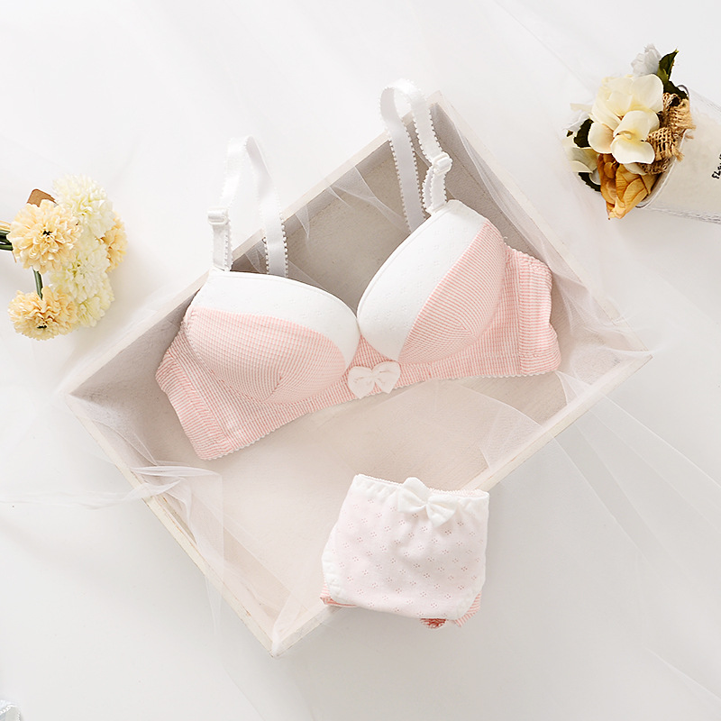 French Famous brand transparent bra romantic temptation cotton bra set young women underwear set push up bra and panty set
