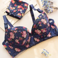 Japan Style Small Cup Bra Pretty Young Ladies S Floral Embroidery Bra And Panty Set With