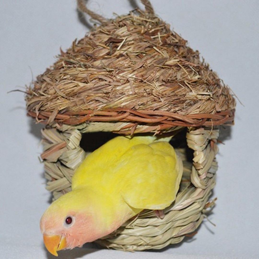 Natural Bird Nest Parrot Parakeet Budgie House Shellhard Pet Bird ...