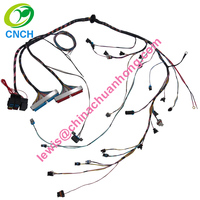1997 2002 LS1 LS6 Standalone Electronic Fuel Injection wiring harness T56 Manuel Transmission EV1 Injector Drive By Cable