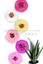 """2 in 1 Giant 1pc 14""""(35cm) Chrysanth Flowers Tissue Pom Poms Paper Flower Centerpiece for Wedding Showers Birthday Tea Party"""
