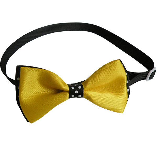 Yellow Dog Collar With Bow