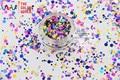 RAI321-186  Mix Colors Dot shapes round  Glitter for nail art ,nail gel,makeup and DIY decoration