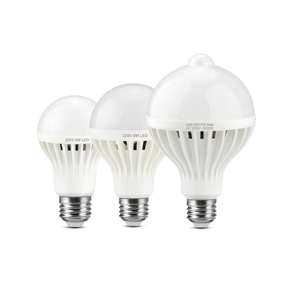 Bilderrahmen mit LED und Passepartout schwarz Holz 20,0 x30,0 cm S67RL