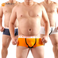 Novo 2016 Plus Size urso de impressão dos homens Boxers Gay roupa Shorts projetado para urso de 4 cores frete grátis! Ml XL XXL