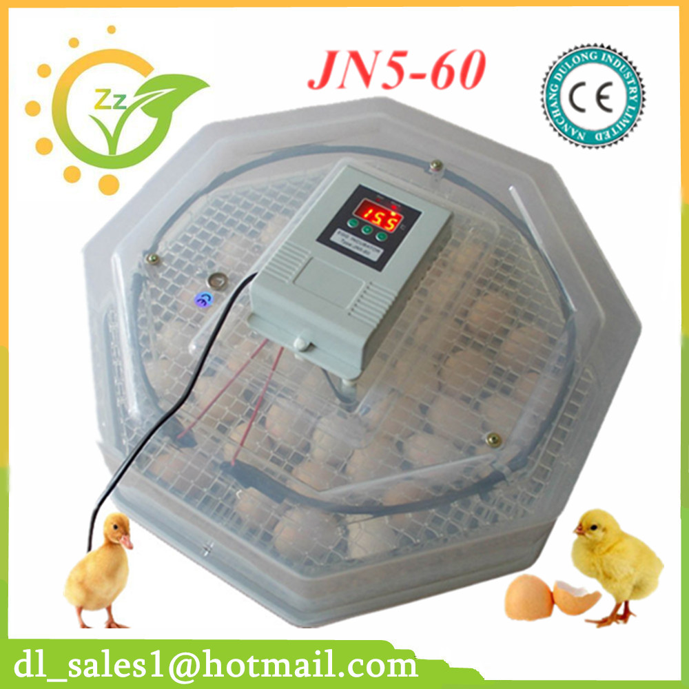 New Design Digital Temperature Incubator Pet Supply Duck
