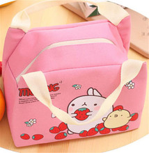 Childrens Kids Lunch Bags Insulated Cool Bag Picnic Bag School Lunchbox Waterproof Bento Large Portable Bag