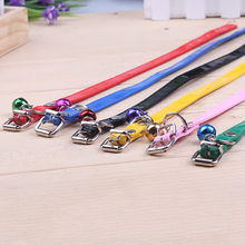 6 kinds of color of dog and cat pet dog collar with traction rope necklace collar