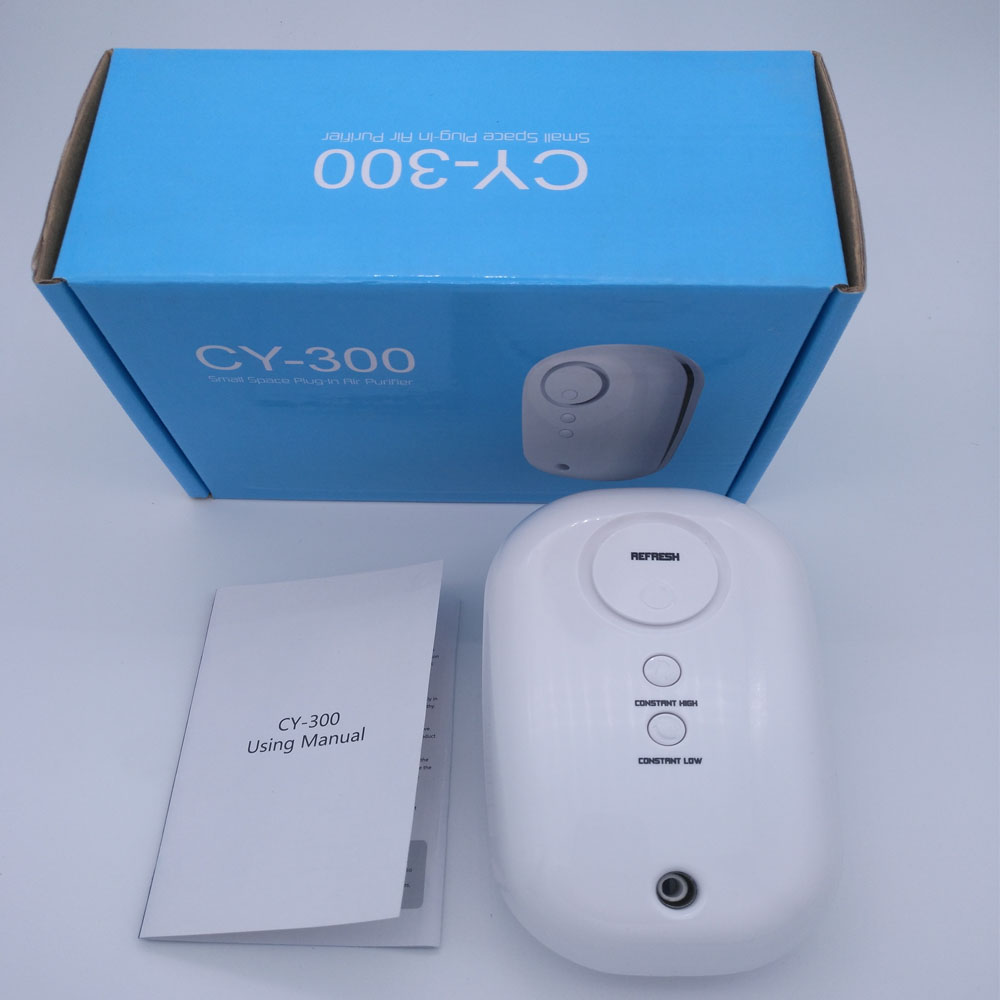 CY 300