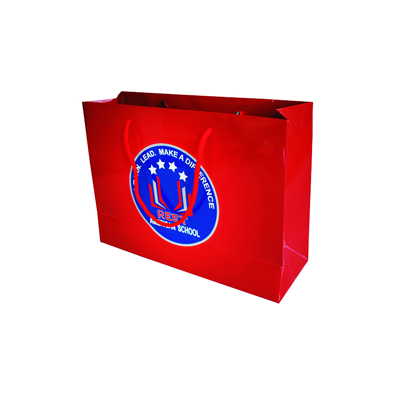 Paper Shopping Bag  2017 Gift Bag  Fashion Packing Paper Bag For Cloth