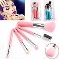 VANDER Azul Rosa 5 Pcs Pincéis de Maquiagem Profissional Definida Beleza Cosméticos Sombra Em Pó Pincéis Styling Ferramentas Make up Kit Escova