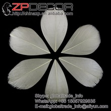 ZPDECOR 3~7cm 200Pieces/lot Beautiful Markings Dyed Beige Trimmed Petal Goose Feather