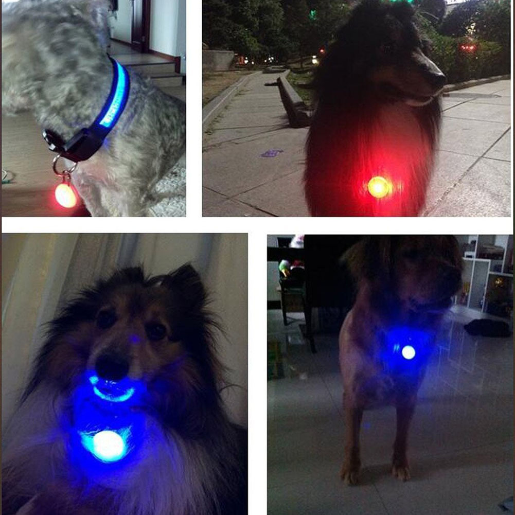 Access Control Kits Colorful Clip-on Safety Night Light Pet Collar Keychain Light Led Waterproof Safety Night Walking Lights For Dogs And Cats