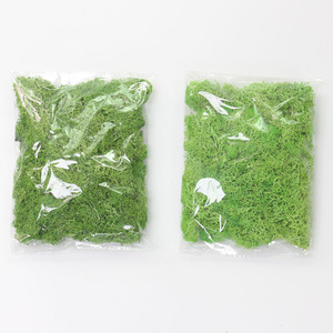Image 2 - Artificial plants eternal life moss / Garden home decoration wall DIY Flower material Mini Garden Micro Landscape Accessories