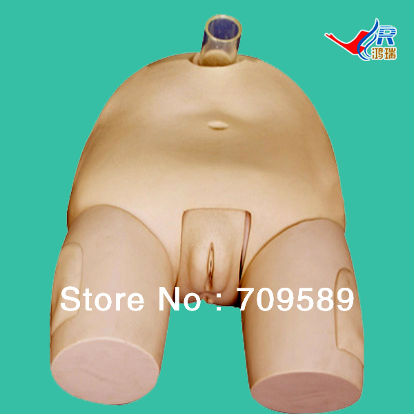 ISO Advanced Female Bladder Puncture Simulator, Vesicopuncture Training Model iso advanced infant arterial puncture arm model arterial puncture training simulator