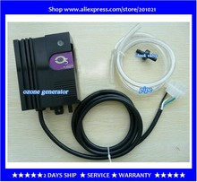 Ozone generator accessories SPA bath pool water disinfection AC220V,50~60Hz 10W 300mg / hr Output(Hong Kong,China)
