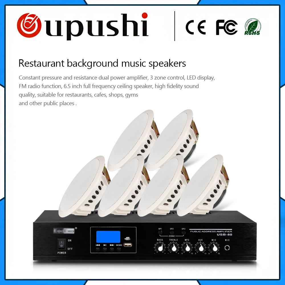 2018 hot selling commercial audio background music in shops bars restaurants hotels waiting areas in ceiling