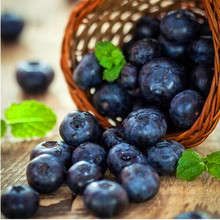 200 pcs/pack Blueberry Bonsai Edible fruit Healthy and delicious for home garden
