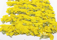 Dye Yellow Dianthus Natural Dried Flowers For Door Hanger Decoration Wholesales Free Shipment 1000 Pcs