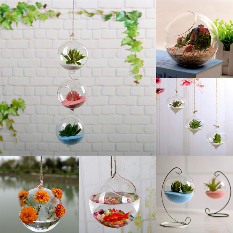 New Home Garden Clear Glass Flower Hanging Vase Planter Terrarium Plant Container